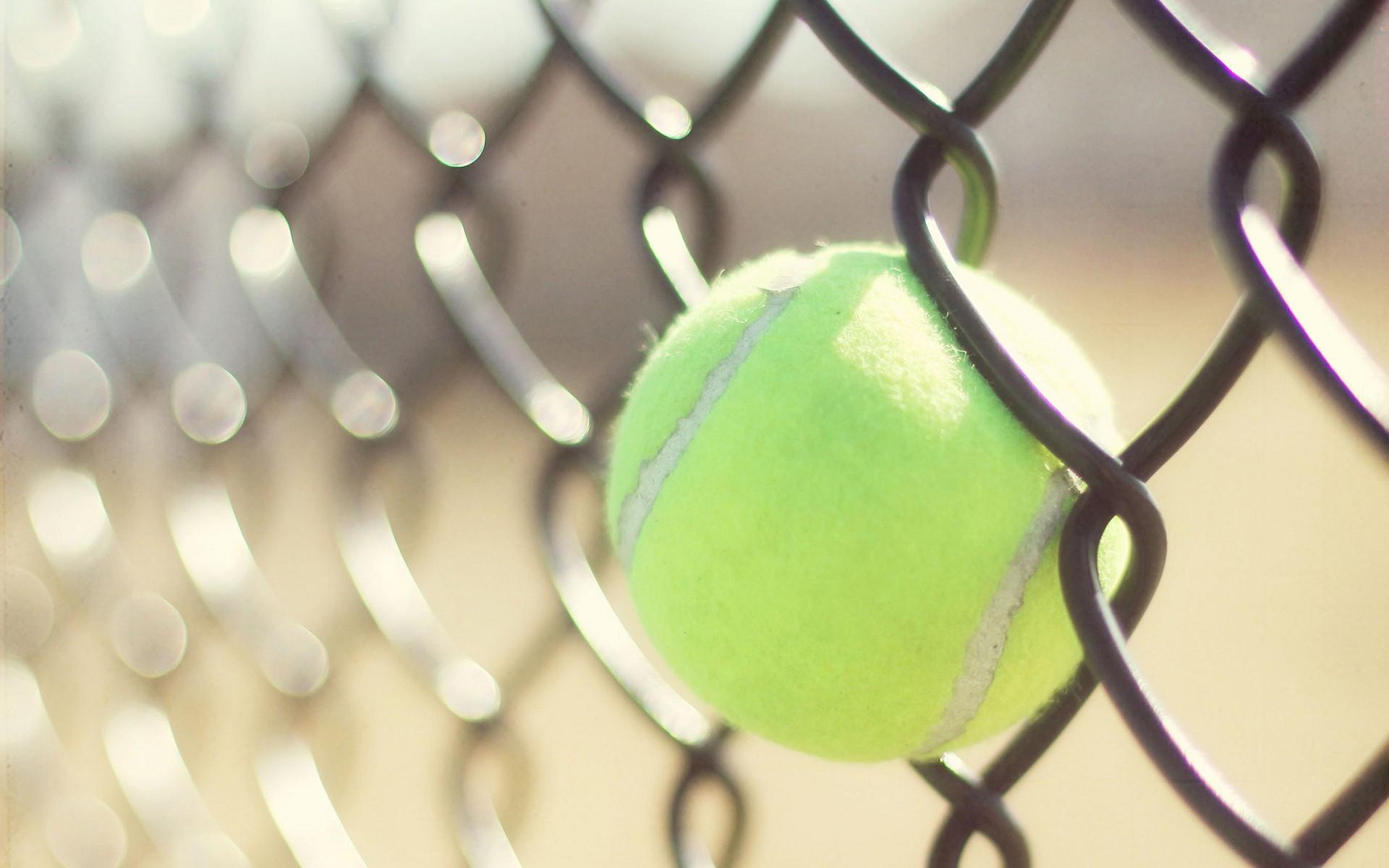 Tennis Wallpaper HD 44865 1920x1200px